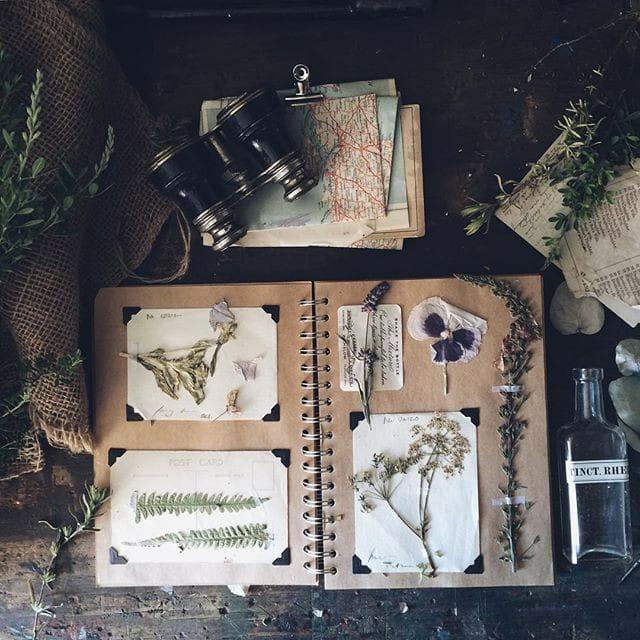 Herbarium Arcanum